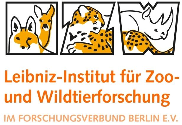 Die Berliner Mischung: Igel bilden keine genetisch isolierten Bestände in der Hauptstadt