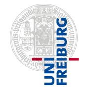 Zwei neue Forschungsschwerpunkte am Freiburg Institute for Advanced Studies (FRIAS)