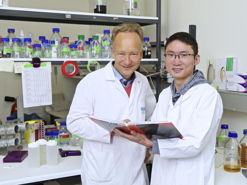 Prof. Dr. Marcus Groettrup und Dr. Jun Li