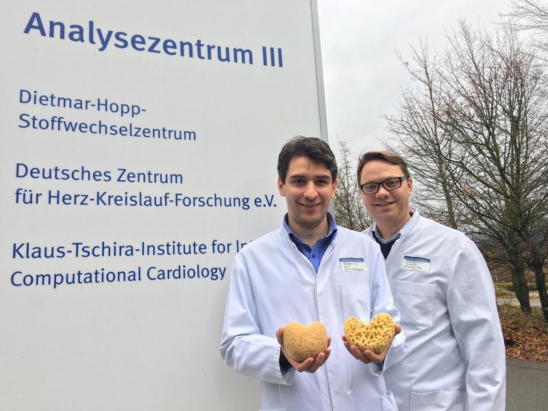 Autoren der Studie: Dr. med. Farbod Sedaghat-Hamedani (li) und Dr. rer. nat. Jan Haas (re) Foto: Universitätsklinikum Heidelberg