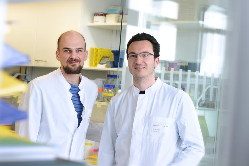 v.re: Dr. Arthur Liesz und Stefan Roth, Institut für Schlaganfall- und Demenzforschung