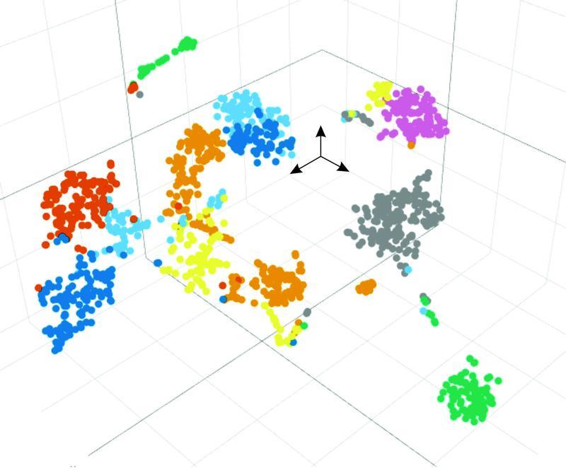 Darstellung des Fingerabdrucks der Genexpression jeder einzelnen Zelle in einer dreidimensionalen Projektion nach bioinformatischer Analyse zur Identifizierung des jeweiligen Zellphänotyps.