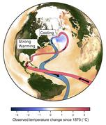 In the face of global warming a region in the Northern Atlantic, close to Greenland, is cooling - scientists link this to a worrying slowdown of the Atlantic Overturning Circulation.