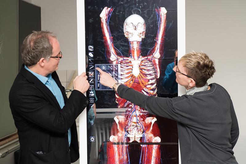 idw - Bild zu: Anatomie in 3D: Virtuelle Seziertische unterstützen ...