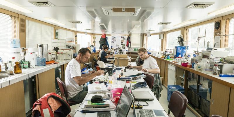 """Zur Forschungsexpedition """"Joint Danube Survey 3"""" wurden 2013 auf der Donau tausende Proben zusammengetragen. Im Schiffslabor wurden erste Vor-Ort-Analysen gemacht bzw. Proben aufbereitet."""