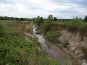 Degraded agricultural stream in the Mississippi delta.
