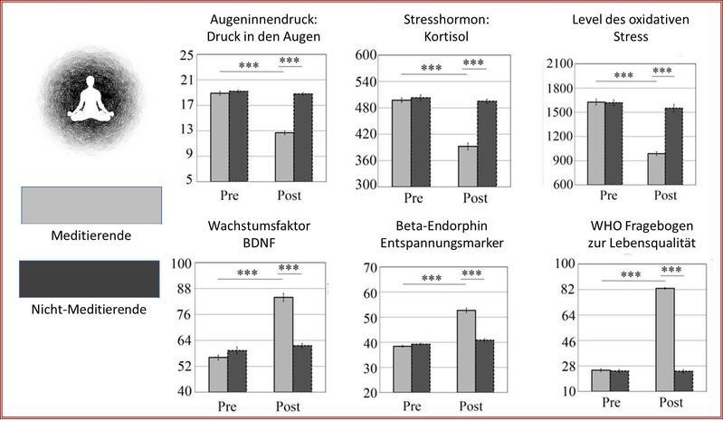 """Vor Beginn der Studie wurden bei allen Teilnehmern ähnliche Parameter gemessen. Nach dreiwöchiger Meditation konnte eine signifikante Senkung des Augeninnendrucks (IOP), des Cortisols und des oxidativen Stressniveaus in der Gruppe """"Meditierende"""" nachgewiesen werden, während die neurotrophen Faktoren im Gehirn und die Beta-Endorphine zunahmen, was zu einer Verbesserung der Lebensqualität führte. In der Gruppe der """"Nicht-Meditierenden"""" gab es dagegen keine Veränderungen. Grafik: Prof. Dr. Bernhard Sabel"""