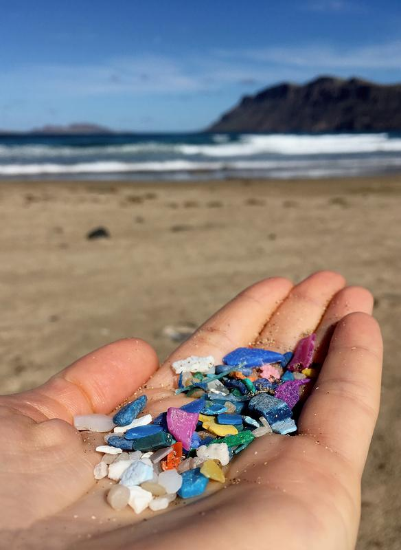 "Depressing ""hand selfie"": Marine pollution with plastics is omnipresent, be it at deserted at dream beaches like here on Lanzarote or in even more remote regions like the Arctic."
