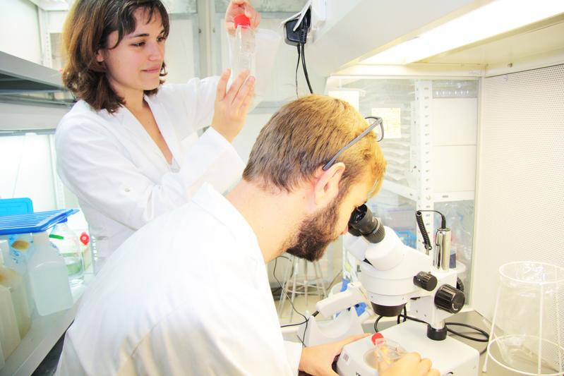 Marine Vallet and Tim Baumeister study chemical interactions in marine plankton communities.
