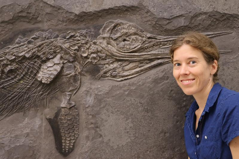 Dr. Erin Maxwell with a specimen of the ichthyosaur Hauffiopteryx typicus