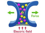 Applying an electric field across an ion channel leads to opposite currents of cations and anions.