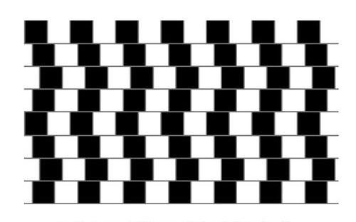 Optischen Täuschungen Auf Der Spur