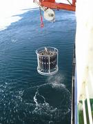 A CTD is measuring conductivity, temperature and salinity in different ocean depths.