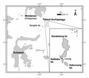 Map of Central Indonesia showing the restricted distribution range of the new monitor species on the remote Talaud Archipelago between North Sulawesi and the Philippines.