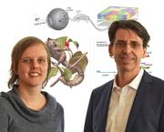 Marion Silies (left) and Fred Wolf (right) Bernstein Center for Computational Neuroscience Göttingen.