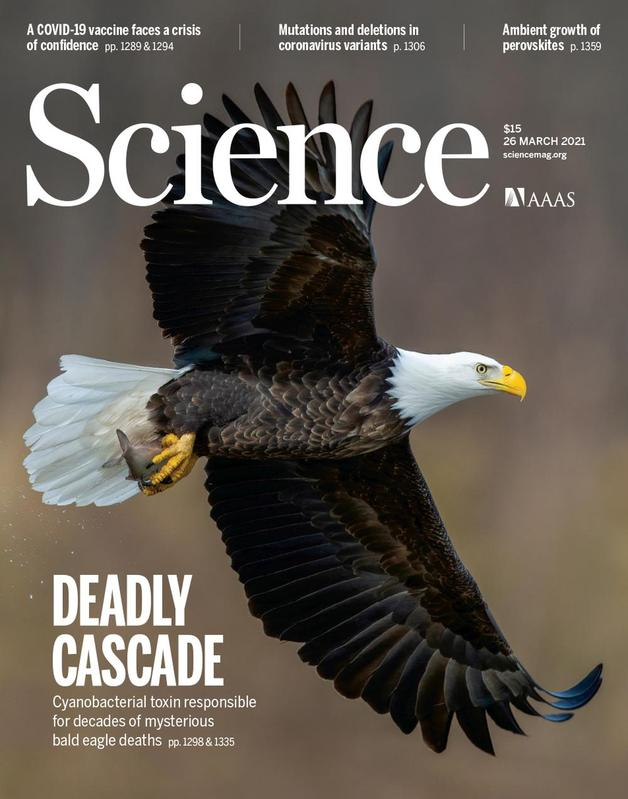 "Cover of ""Science"""